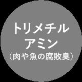 トリメチルアミン(肉や魚の腐敗臭)